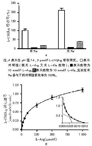 mmol/l葡萄糖和10
