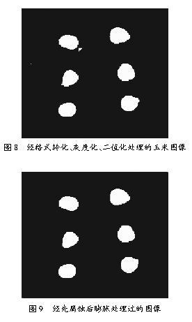 基于图像处理的玉米质量检测技术研究
