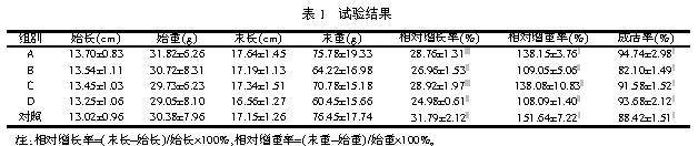 2.3 饲料中蛋白质的含量 通过比较投喂试验饲料A和C以及试验饲料B和D,我们发现,无论是相对增长率还是相对增重率,两者之间并没有显著差异,而它们蛋白的含量却不尽相同,分别为45%和40%。Portz等用平均体重为14.46g的大口黑鲈为研究对象,发现大口黑鲈生长最快时的蛋白质含量为43.